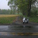 RAIN: To ride or not to ride