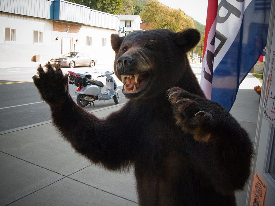Stuffed black bear in Galeton, Pennsylvania