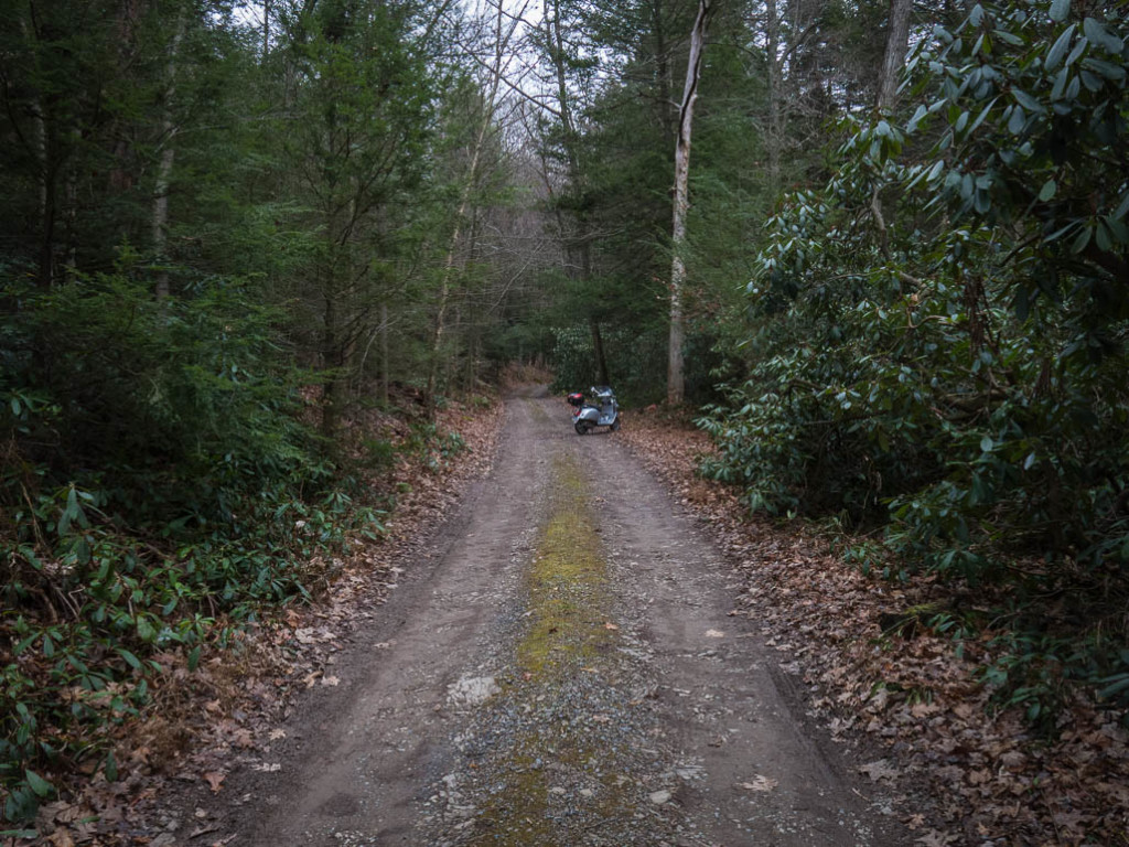 Vespa GTS on a narrow gravel forest road