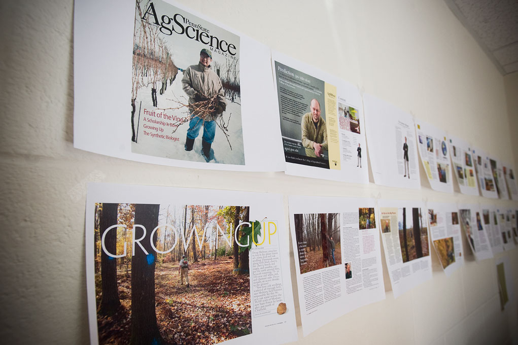 magazine spreads on an office wall