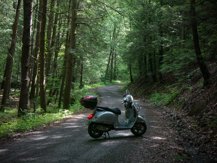 Vespa GTS scooter in Bald Eagle State Forest