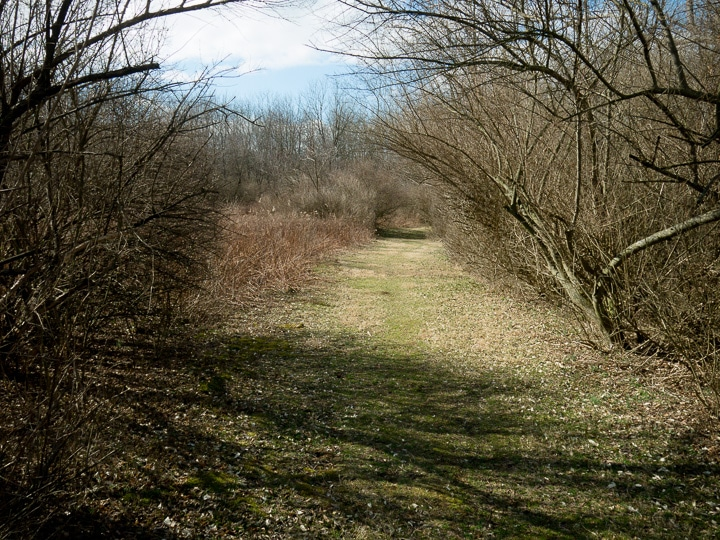 Trail at the Stan Yoder Memorial Preserve