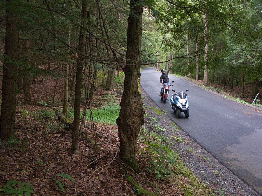 Piaggio MP3 250 scooter on road through woods