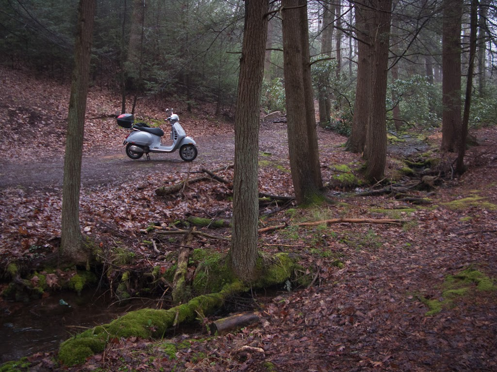 Vespa GTS scooter along dirt forest path