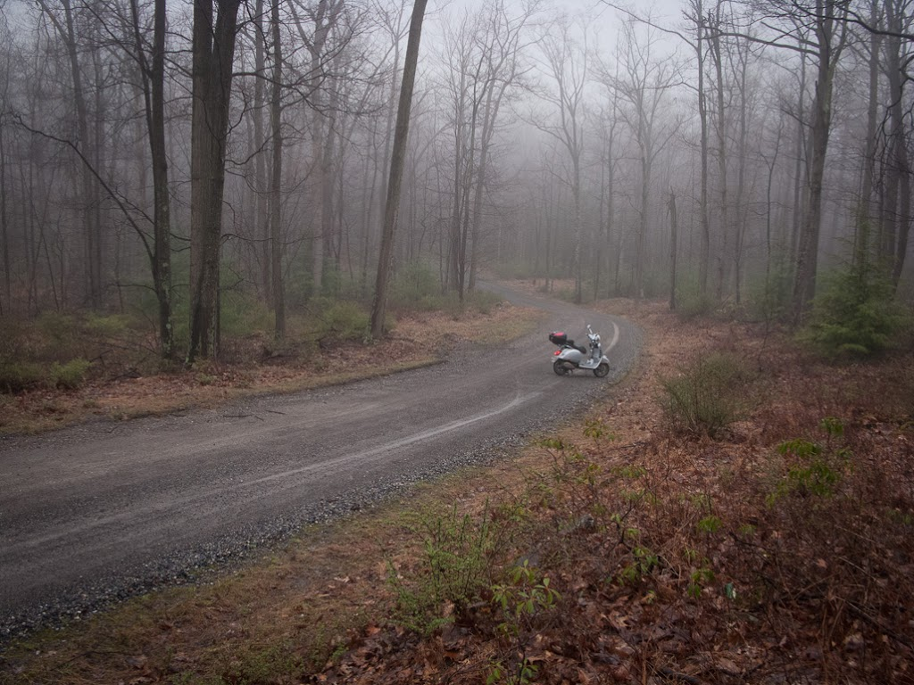 Vespa GTS scooter on gravel forest road