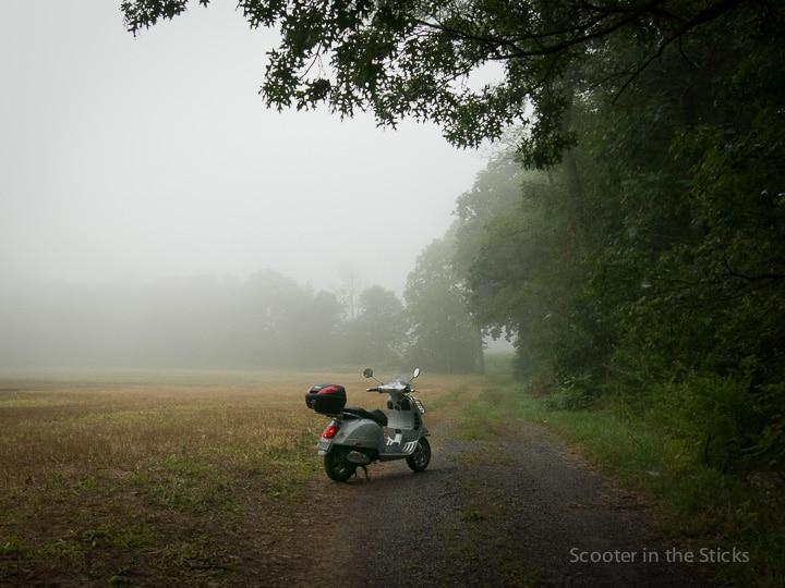 Vespa GTS scooter on foggy farm lane