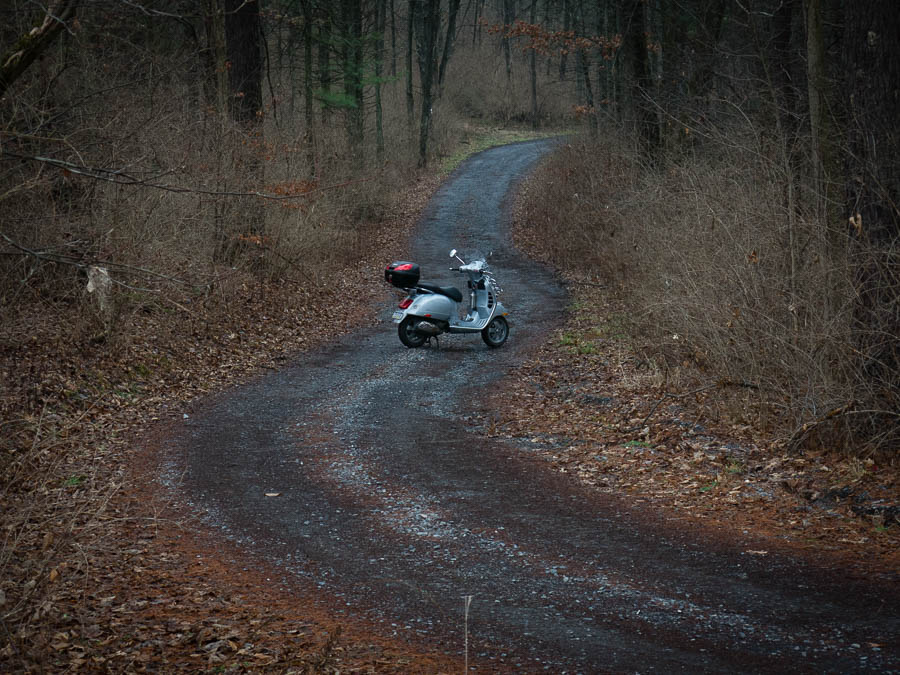 Vespa scooter on a winding forest road