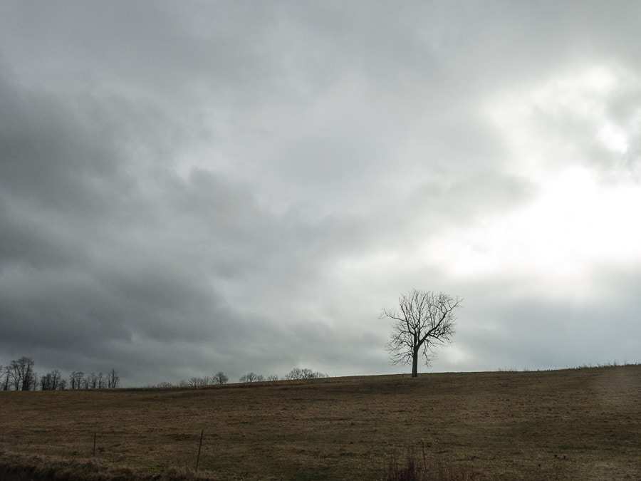 Cloud covered landscape in central Pennsylvania with solitary tree