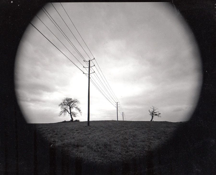 Trees and powerlines in a central Pennsylvania farm field