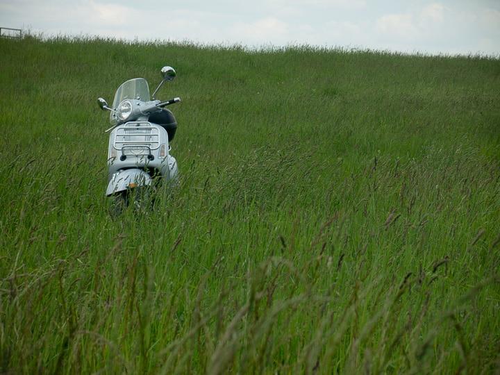 Vespa in a grassy field