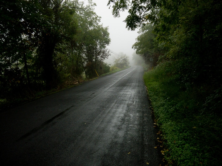 foggy country road
