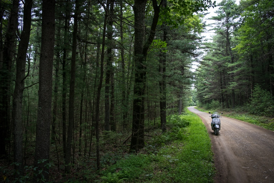 Vespa GTS scooter along Pine Swamp Road in Bald Eagle State Forest.