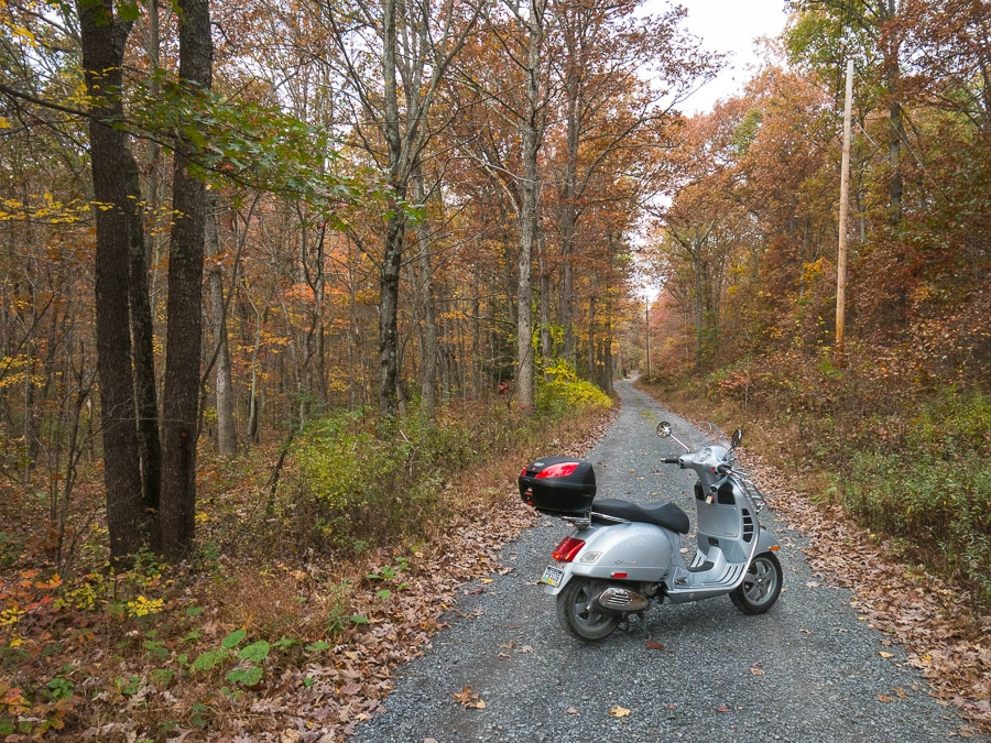 Vespa GTS scooter in the woods