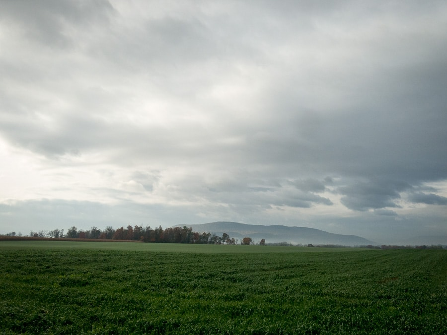 gray day and rural landscape