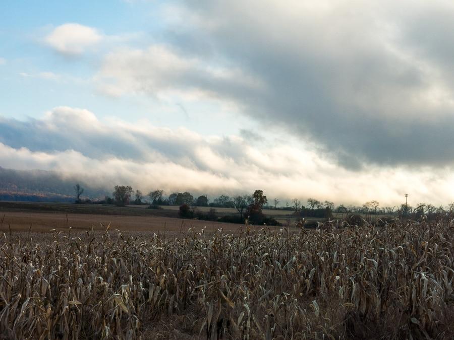 dramatic sky on an autumn evening